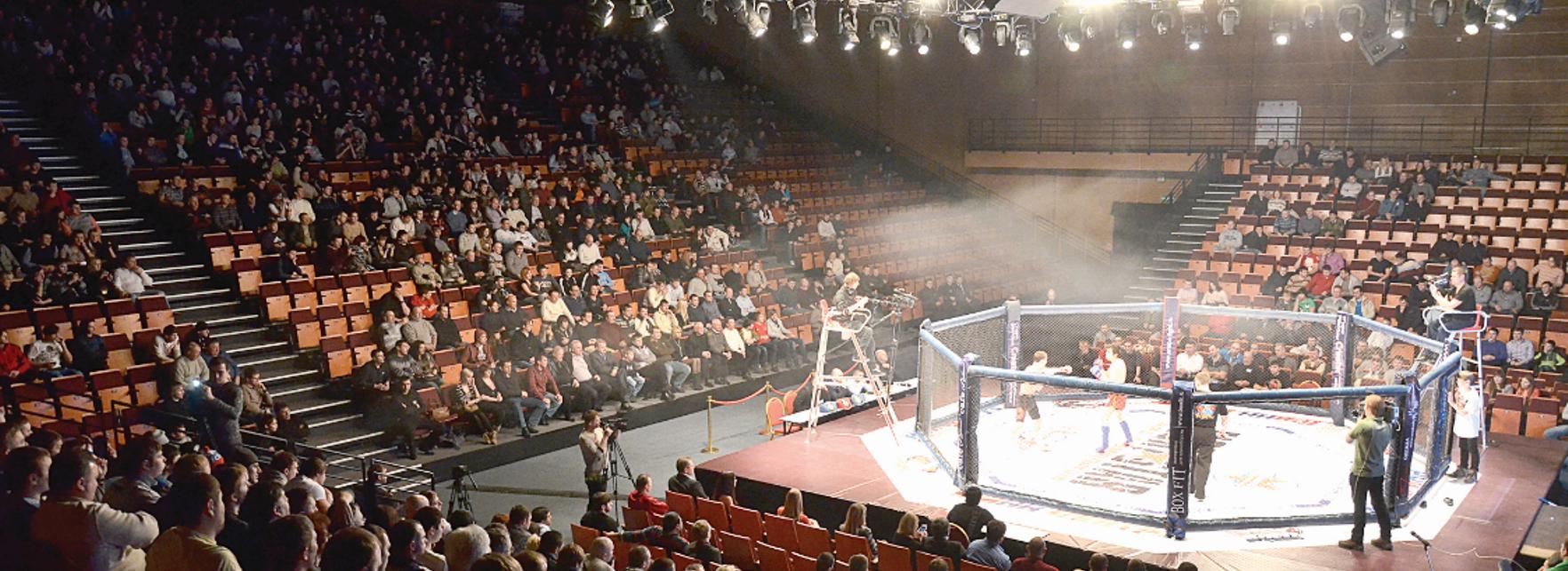 Турниры по смешанным боевым искуствам MMA